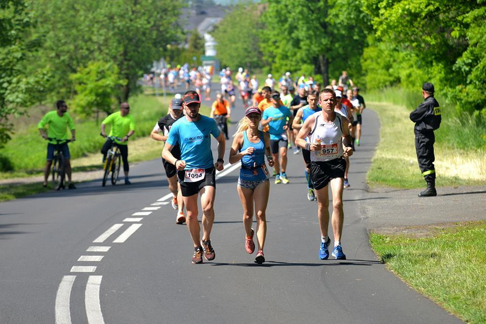 II Półmaraton Miękinia. Wiosenny bieg między winnicami