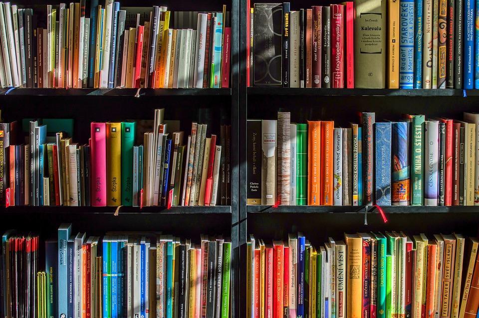 Książka znajwyższej półki!